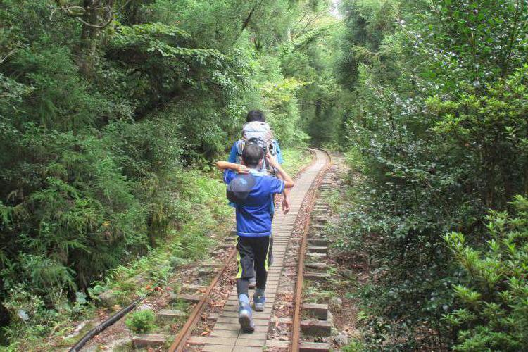 Family Travel Yakushima.JPG