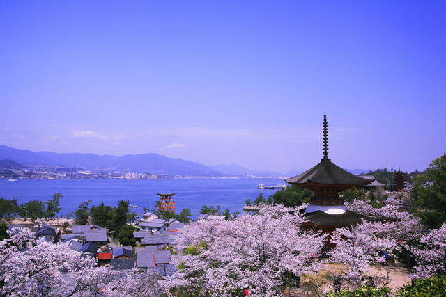 Highlights of Western Japan Tour -Luxury Japan Travel - Michi Travel