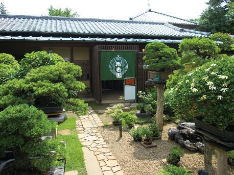 Private Tour To Garden In Tokyo And Omiya Bonsai Village Luxury