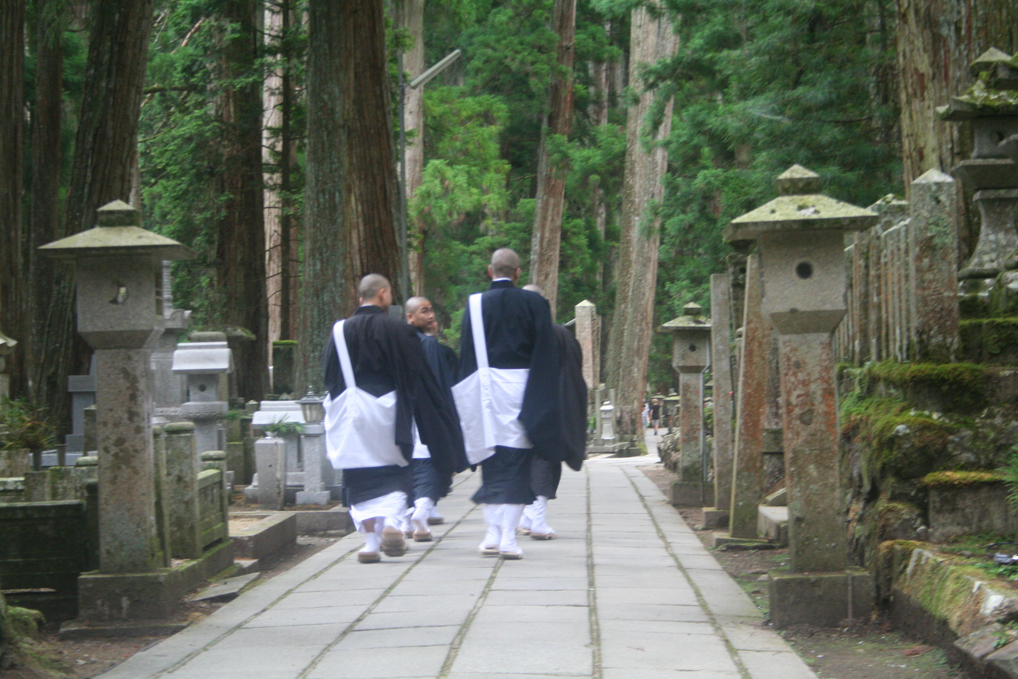 Mt Koya Private Tour.jpg